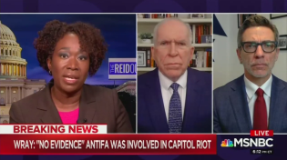 Thumbnail for MSNBC Panel Suggests Antifa Is Noble, the Right Is Worse Than Al-Qaeda